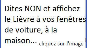 DireNon